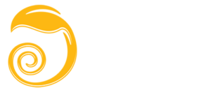 AMOGH FINANCE